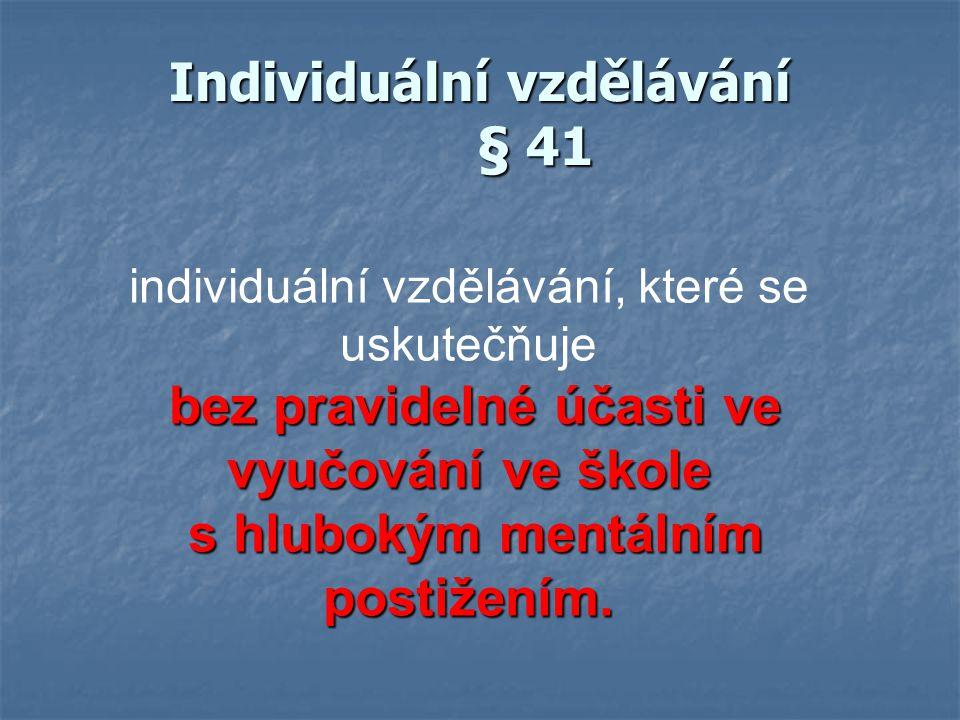 Individuální vzdělávání § 41