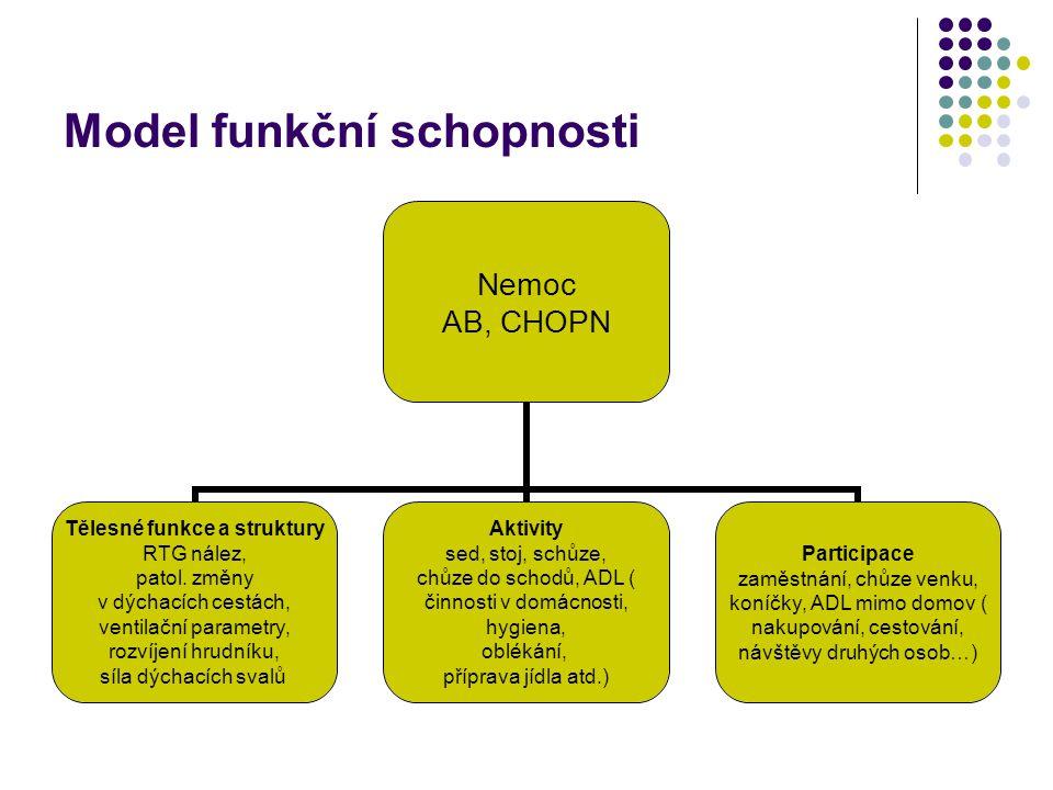 Model funkční schopnosti