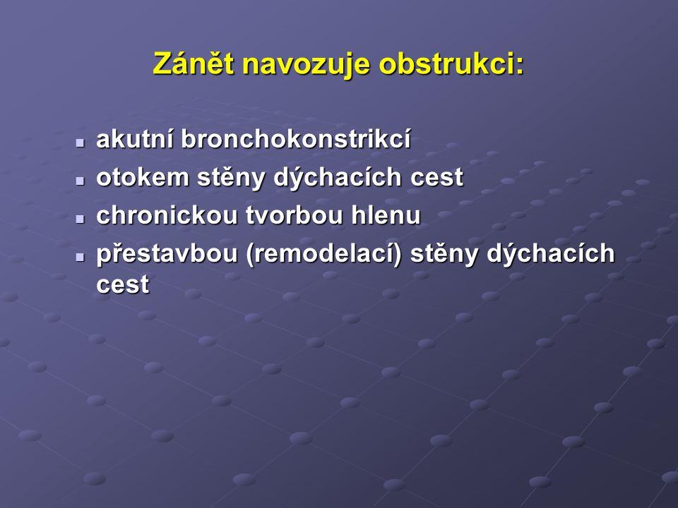 Zánět navozuje obstrukci: