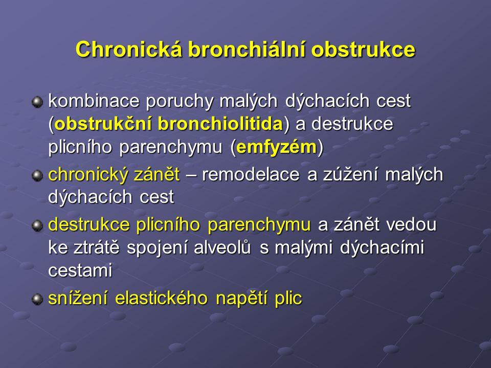 Chronická bronchiální obstrukce