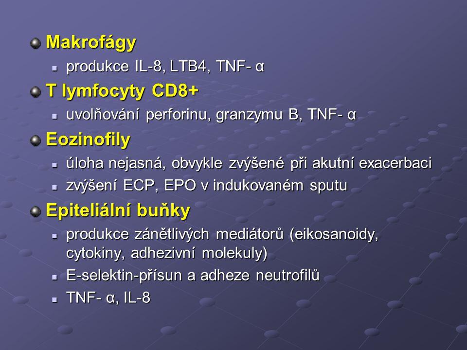 Makrofágy T lymfocyty CD8+ Eozinofily Epiteliální buňky