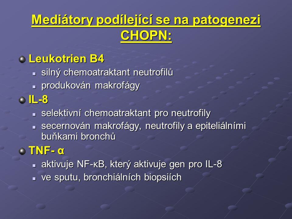 Mediátory podílející se na patogenezi CHOPN: