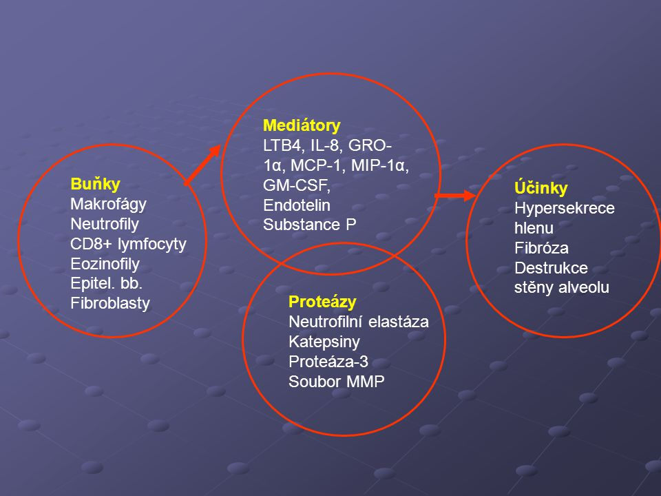 Mediátory LTB4, IL-8, GRO-1α, MCP-1, MIP-1α, GM-CSF, Endotelin. Substance P. Buňky. Makrofágy. Neutrofily.