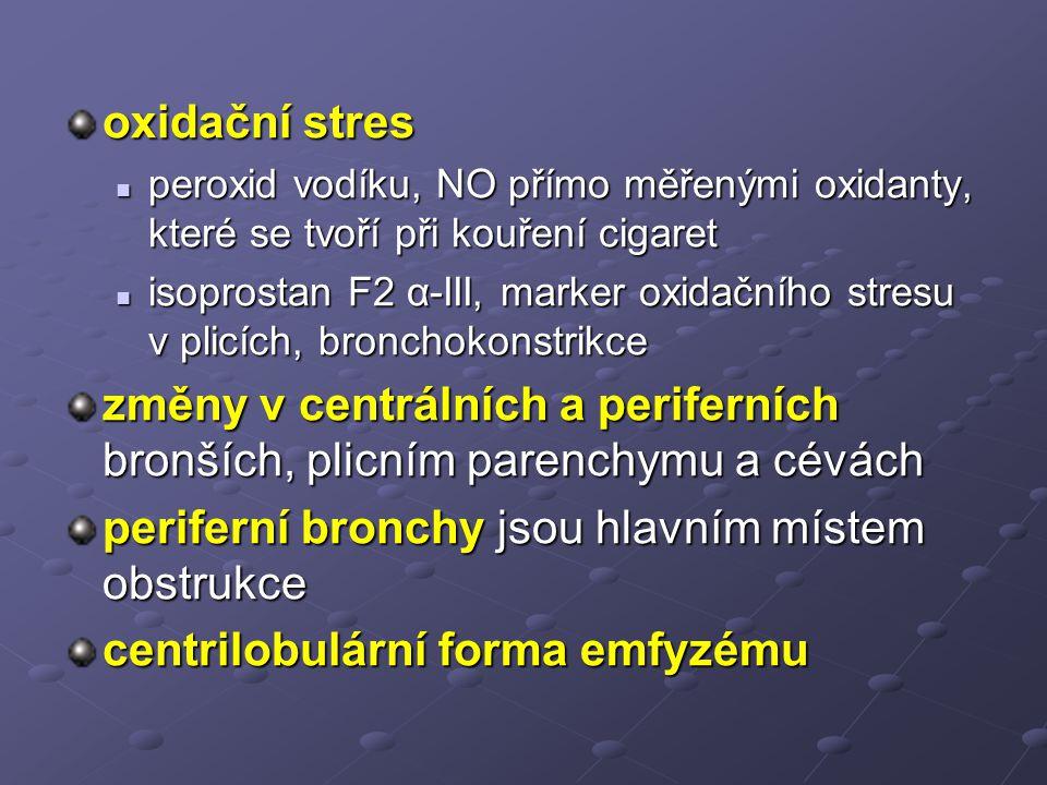 periferní bronchy jsou hlavním místem obstrukce