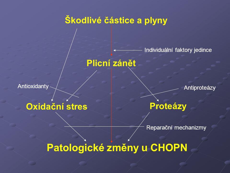 Patologické změny u CHOPN