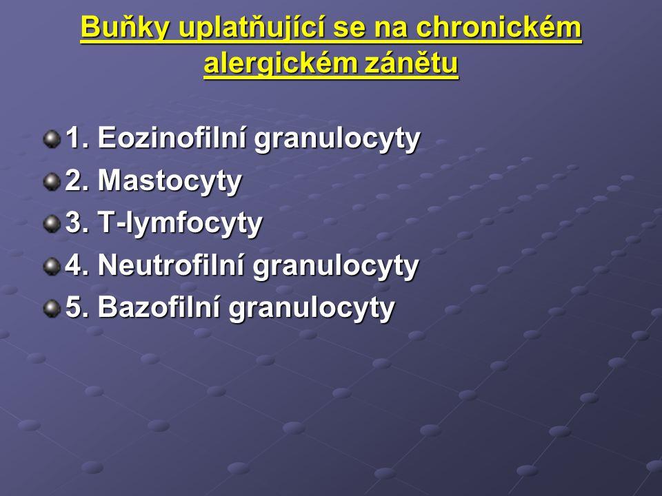 Buňky uplatňující se na chronickém alergickém zánětu