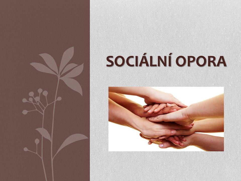 Sociální opora
