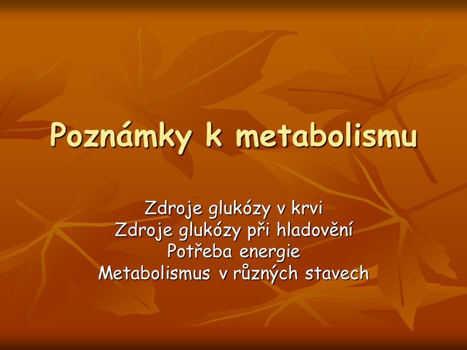 Poznámky k metabolismu