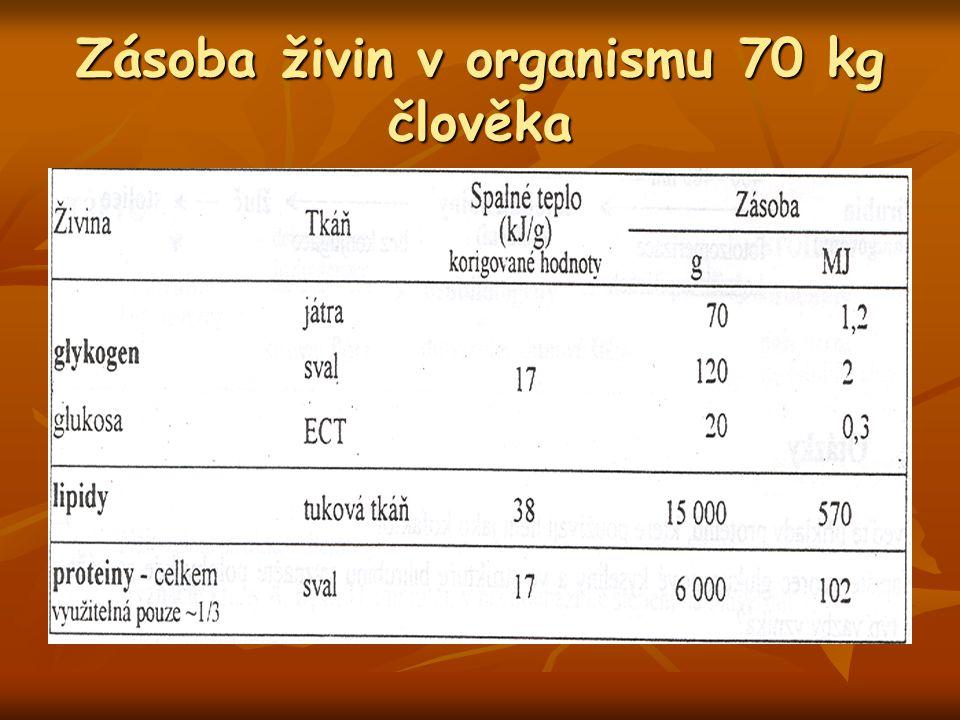 Zásoba živin v organismu 70 kg člověka