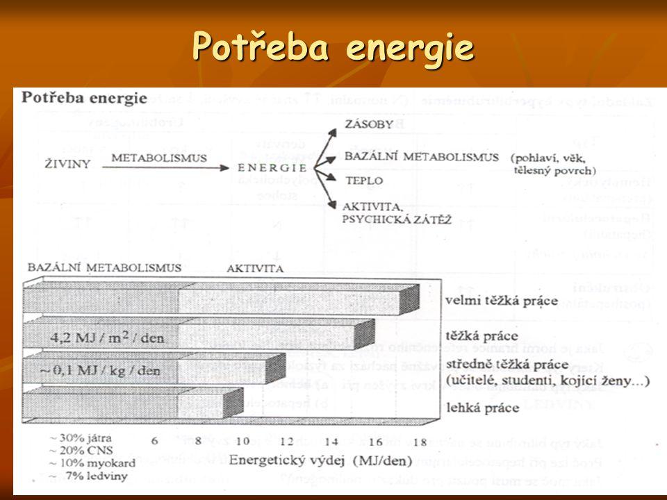 Potřeba energie