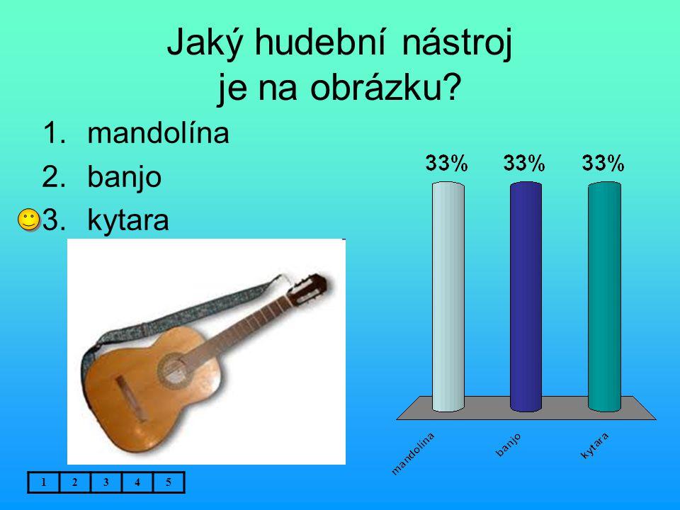 Jaký hudební nástroj je na obrázku