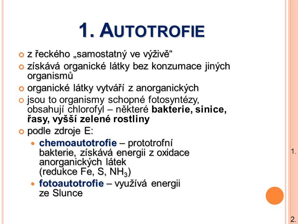 """1. Autotrofie z řeckého """"samostatný ve výživě"""
