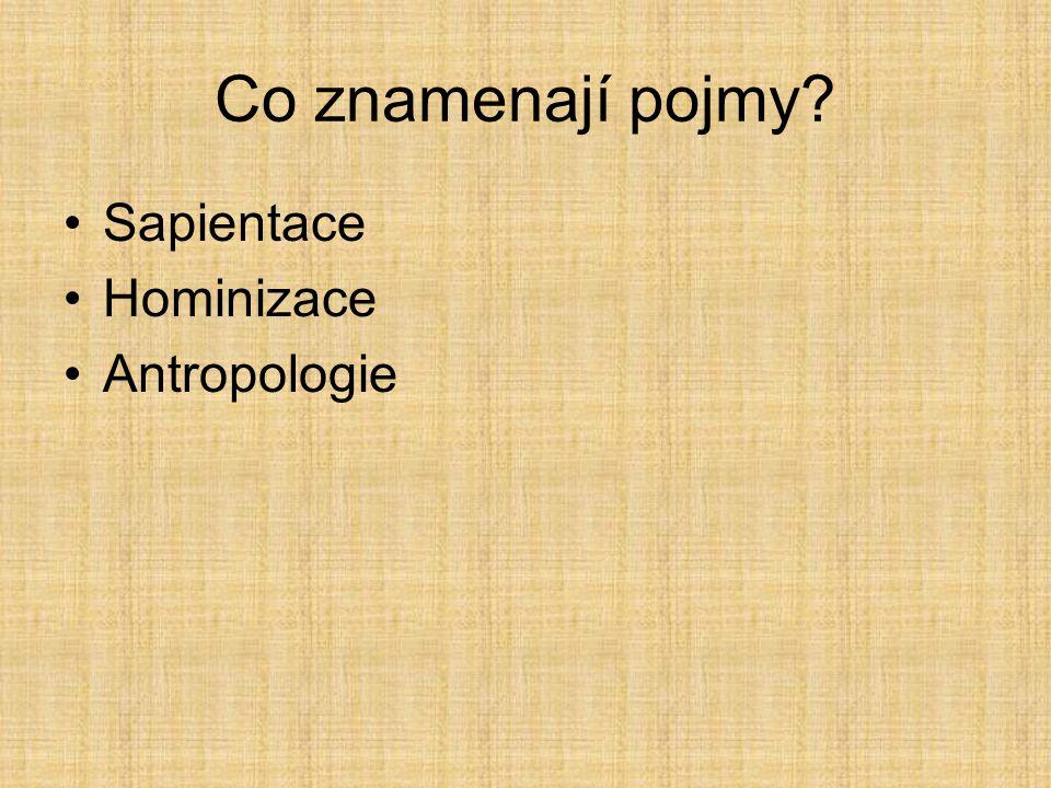 Co znamenají pojmy Sapientace Hominizace Antropologie