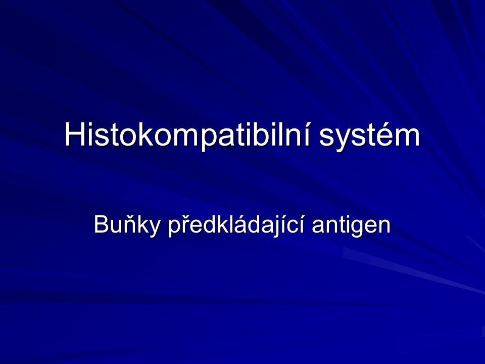 Histokompatibilní systém