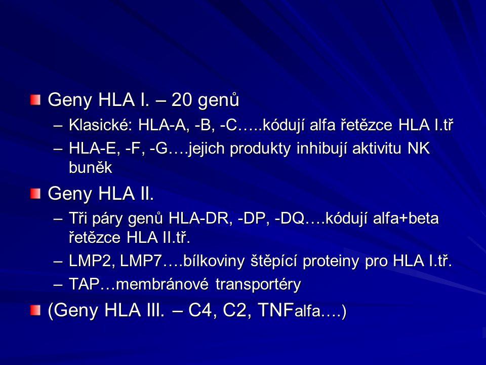 (Geny HLA III. – C4, C2, TNFalfa….)