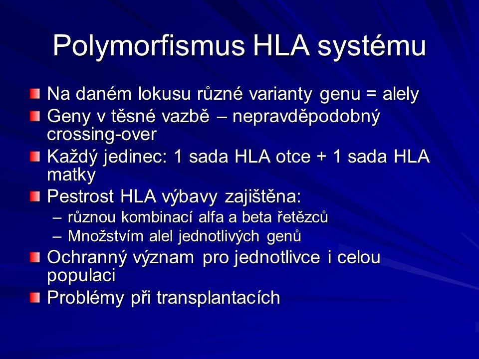 Polymorfismus HLA systému