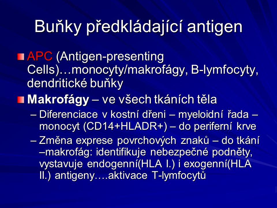 Buňky předkládající antigen
