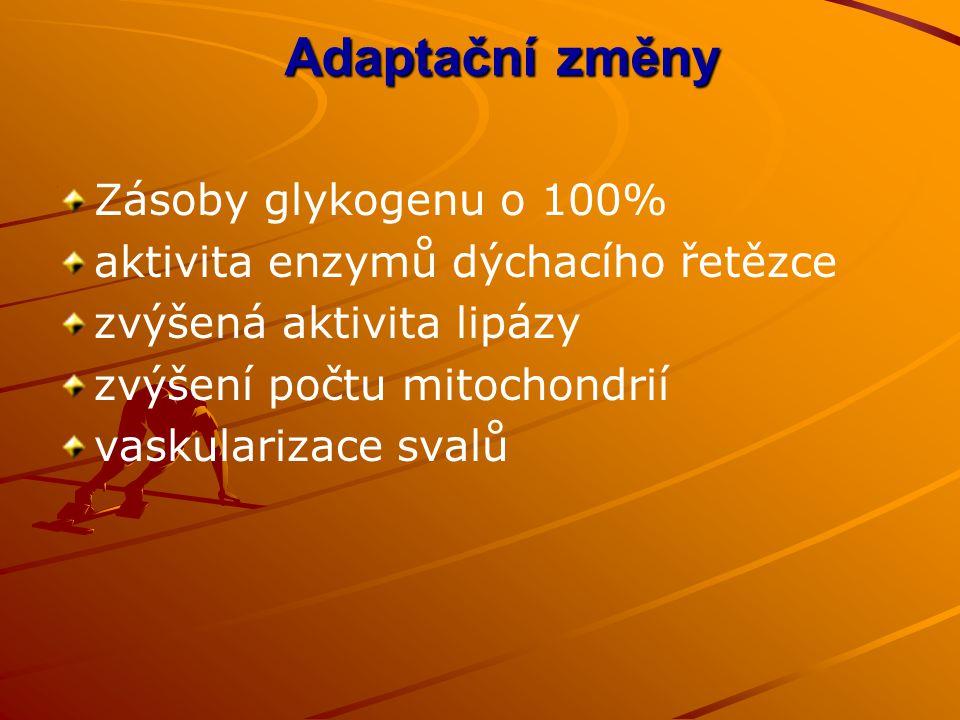 Adaptační změny Zásoby glykogenu o 100%
