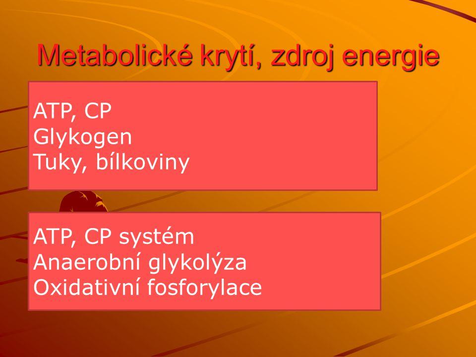 Metabolické krytí, zdroj energie