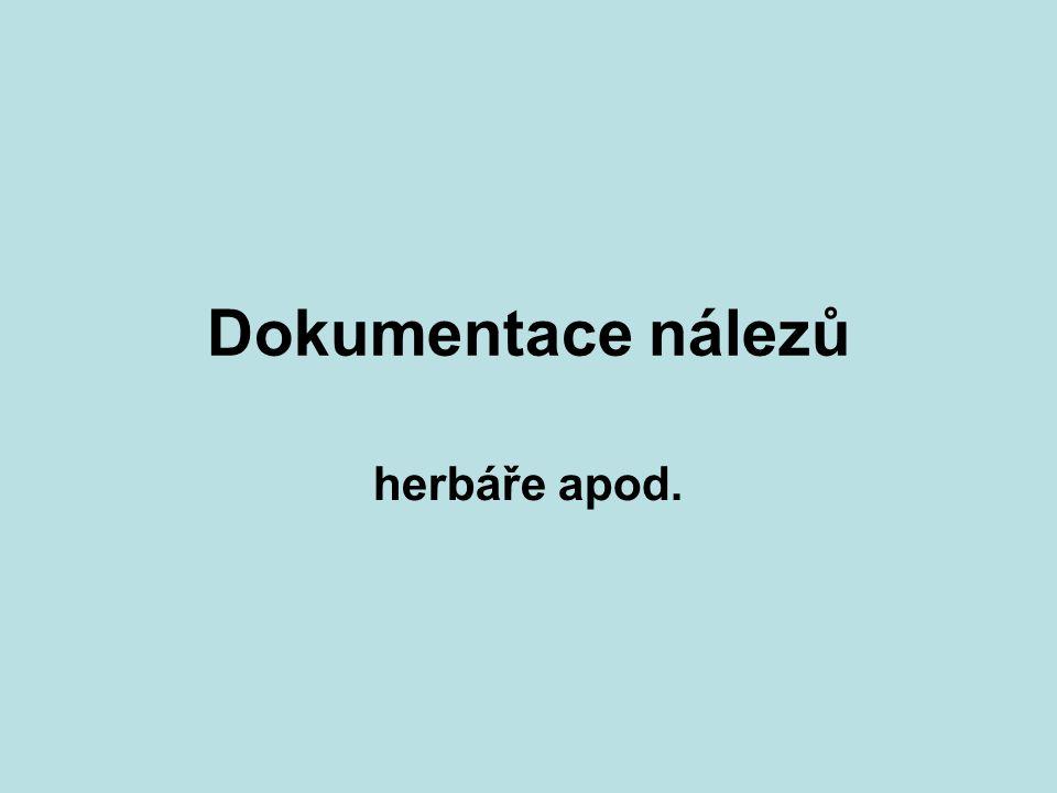Dokumentace nálezů herbáře apod.