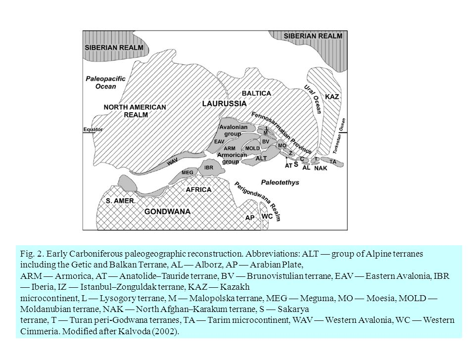 Fig. 2. Early Carboniferous paleogeographic reconstruction
