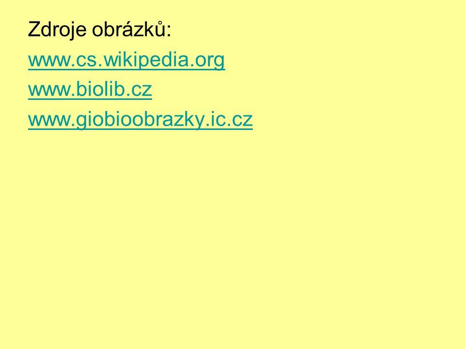 Zdroje obrázků: www. cs. wikipedia. org www. biolib. cz www