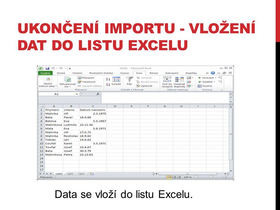 Ukončení importu - vložení dat do listu Excelu