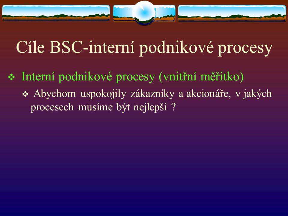 Cíle BSC-interní podnikové procesy