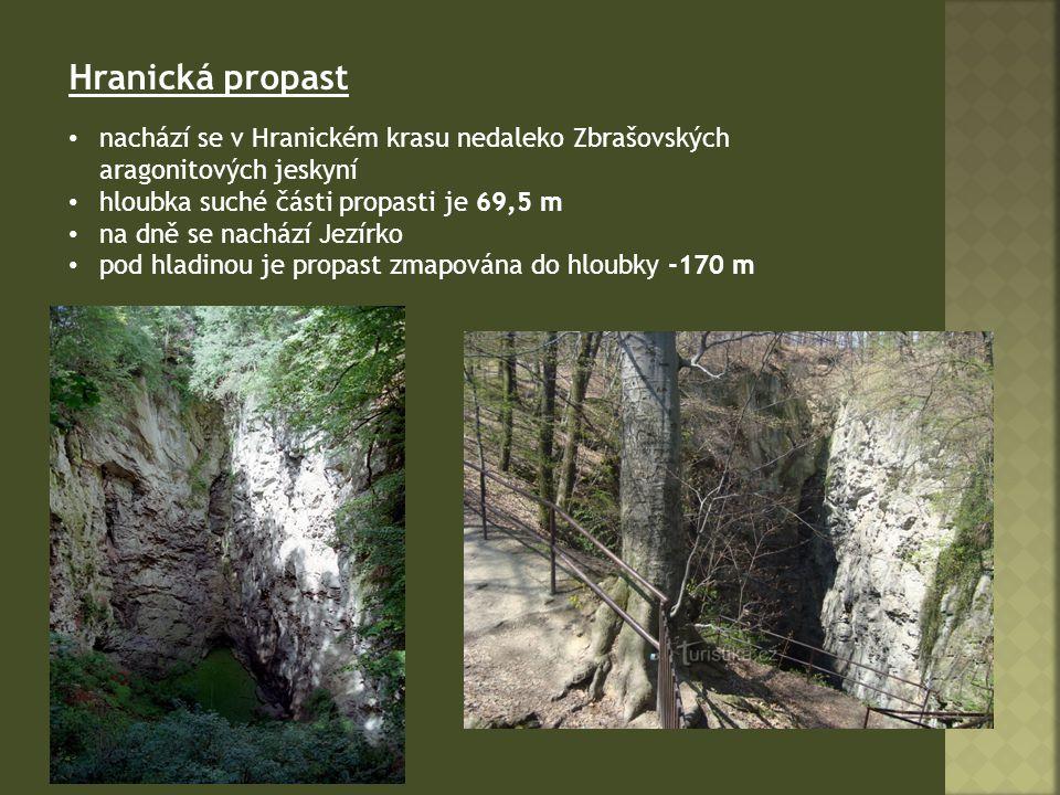 Hranická propast nachází se v Hranickém krasu nedaleko Zbrašovských aragonitových jeskyní. hloubka suché části propasti je 69,5 m.