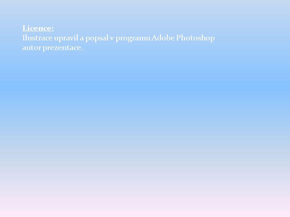 Licence: Ilustrace upravil a popsal v programu Adobe Photoshop autor prezentace.