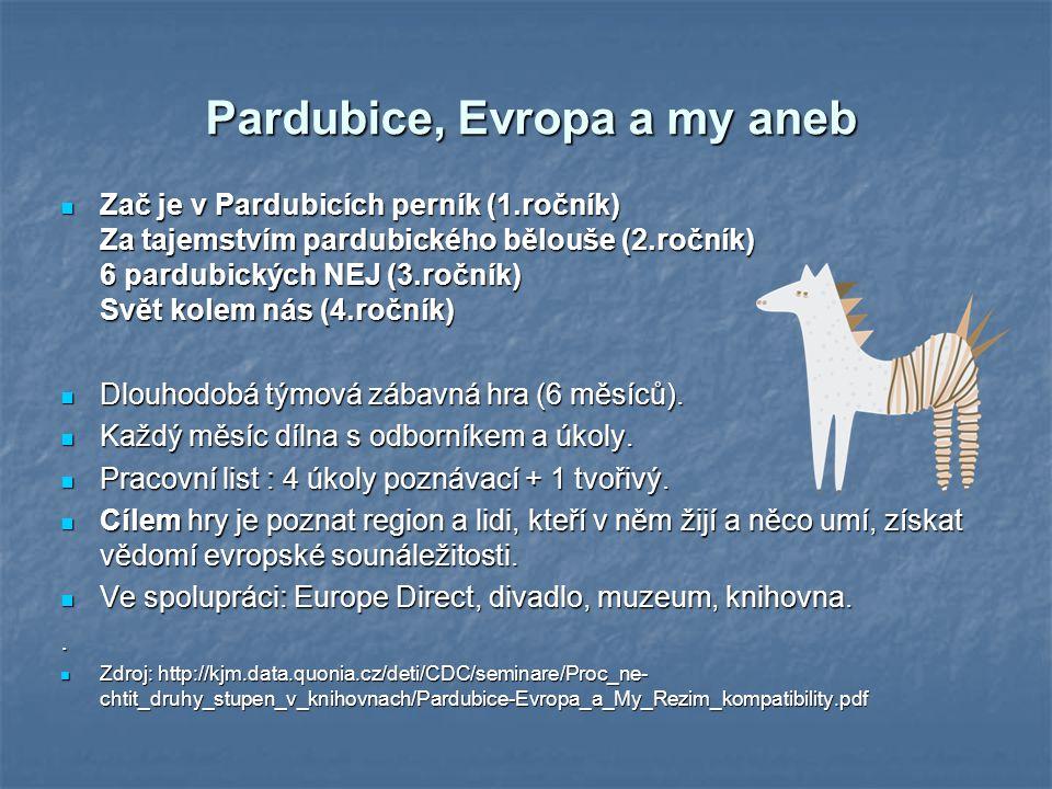 Pardubice, Evropa a my aneb