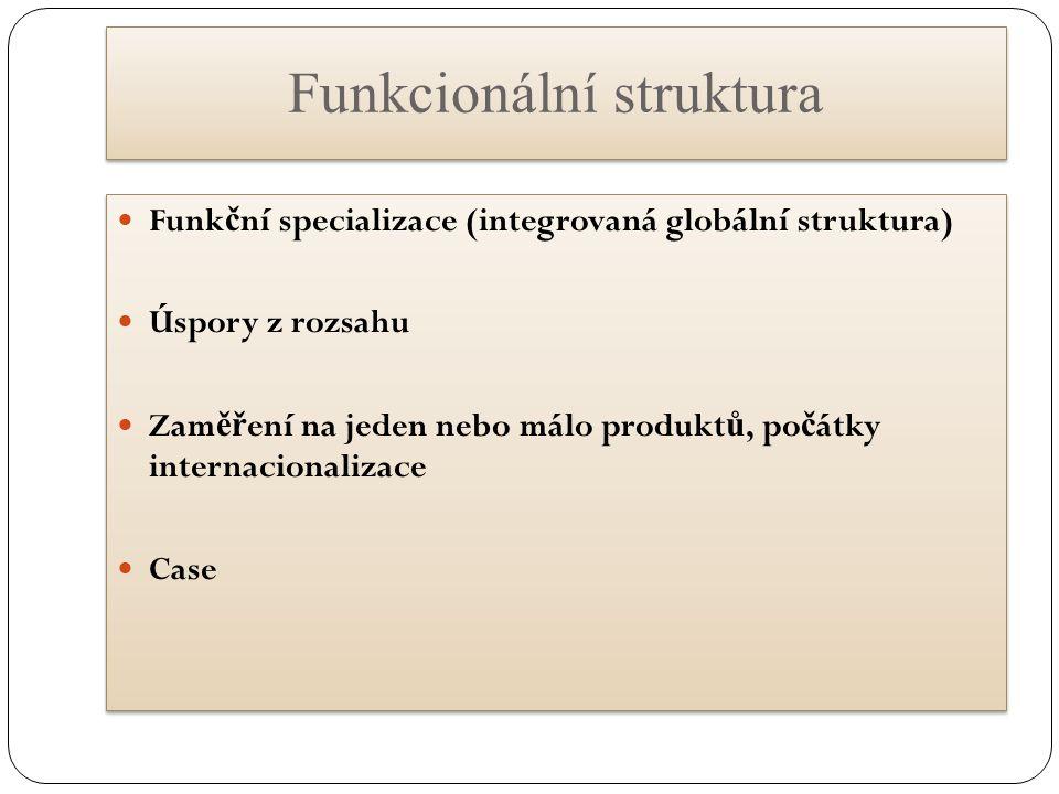 Funkcionální struktura