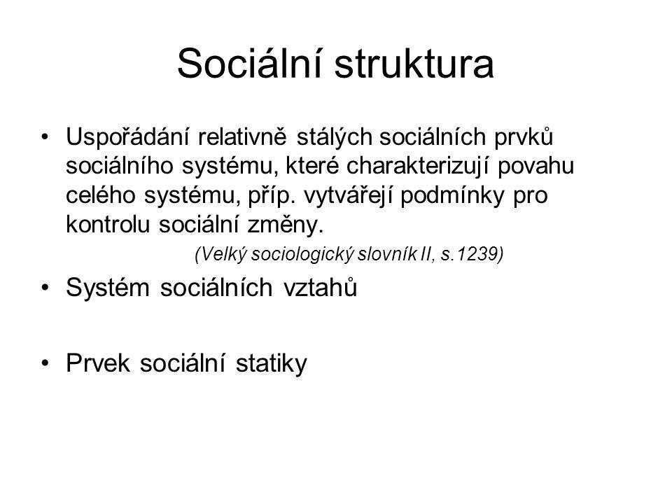 Sociální struktura Systém sociálních vztahů Prvek sociální statiky