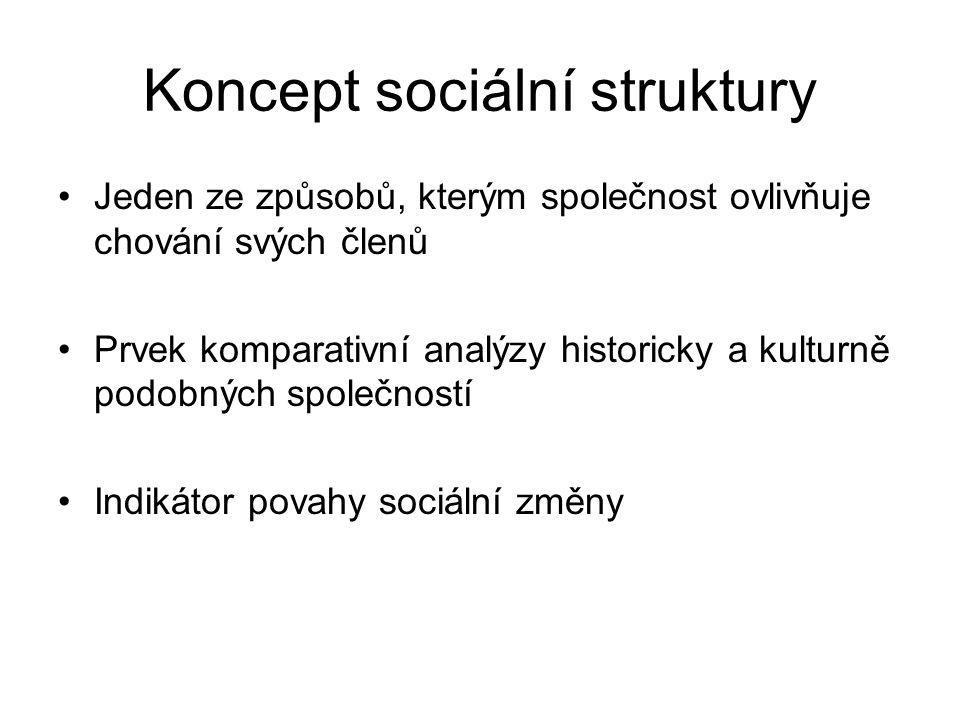Koncept sociální struktury