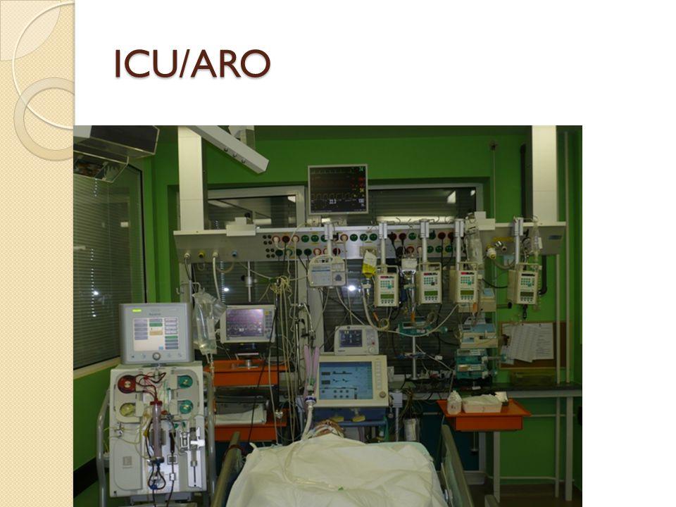 ICU/ARO