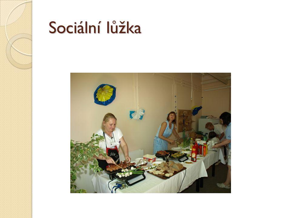 Sociální lůžka