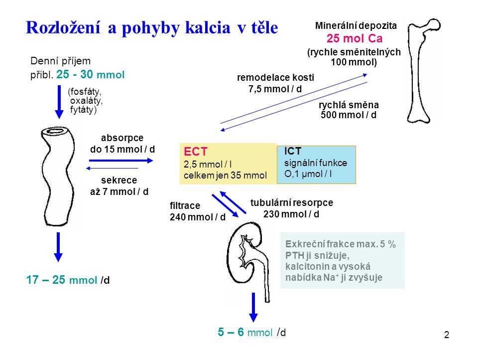 Rozložení a pohyby kalcia v těle