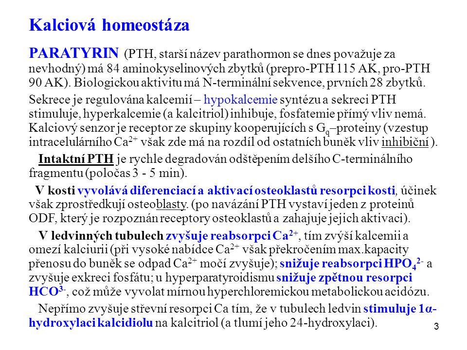 Kalciová homeostáza