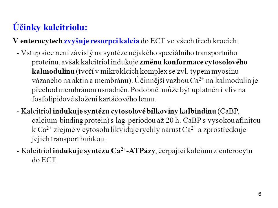 Účinky kalcitriolu: V enterocytech zvyšuje resorpci kalcia do ECT ve všech třech krocích: