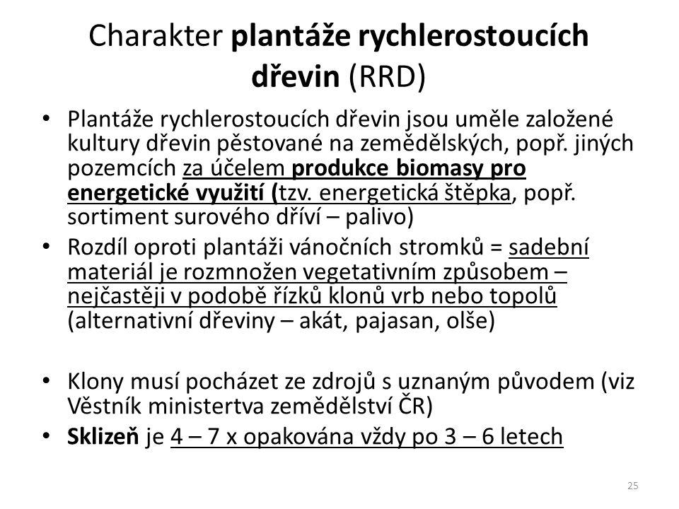 Charakter plantáže rychlerostoucích dřevin (RRD)