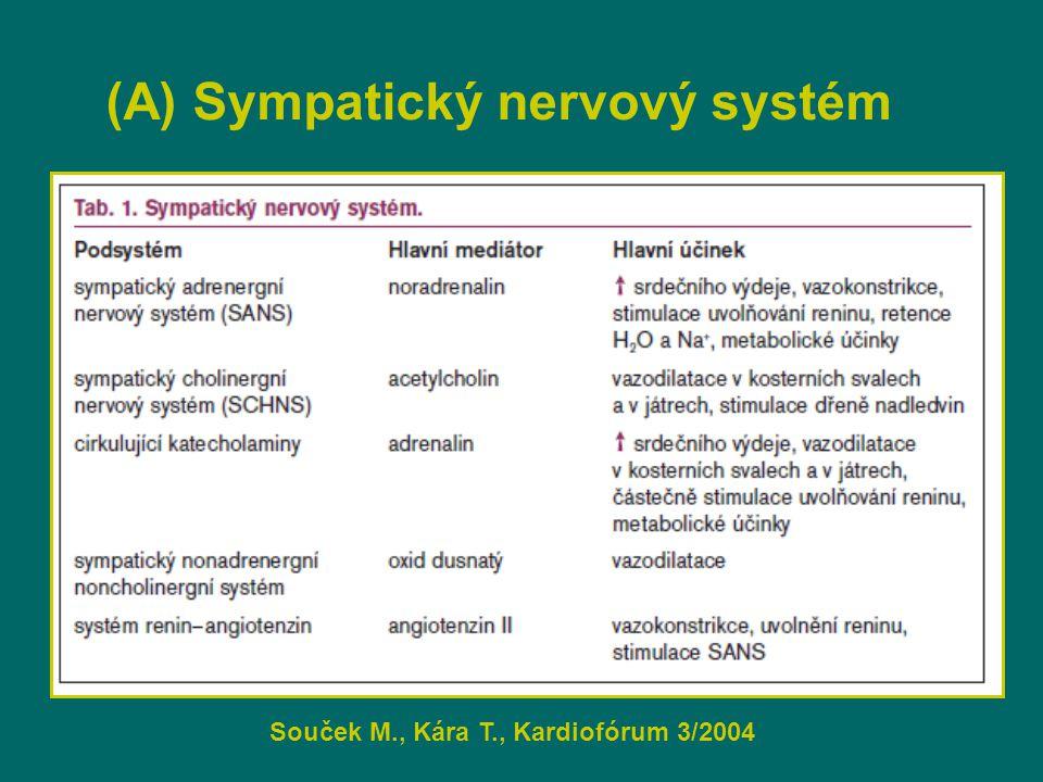(A) Sympatický nervový systém