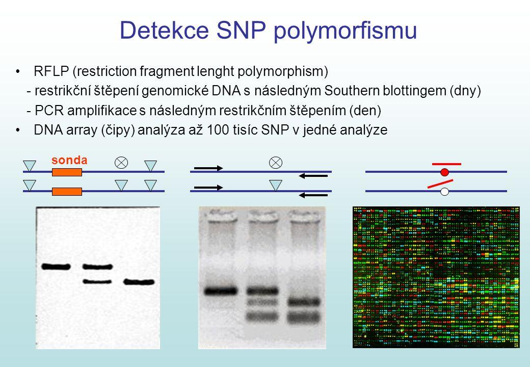 Detekce SNP polymorfismu