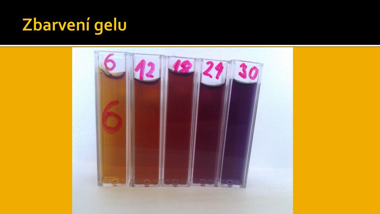 Zbarvení gelu