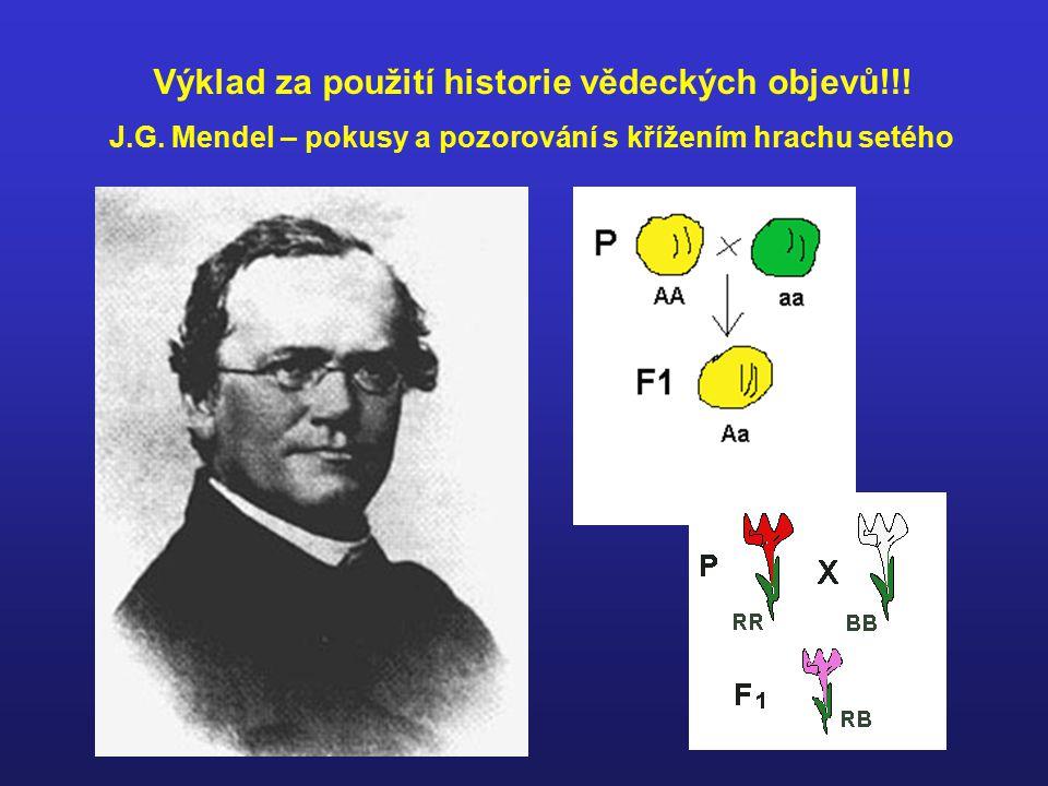 J.G. Mendel – pokusy a pozorování s křížením hrachu setého