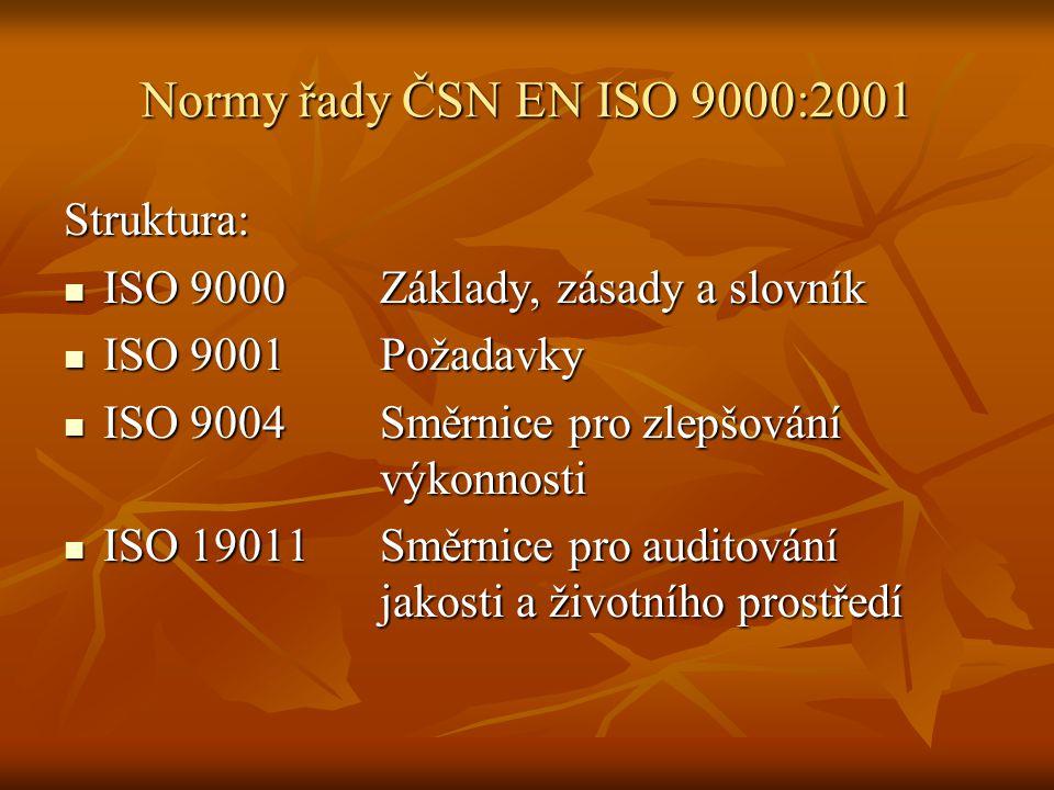 Normy řady ČSN EN ISO 9000:2001 Struktura: