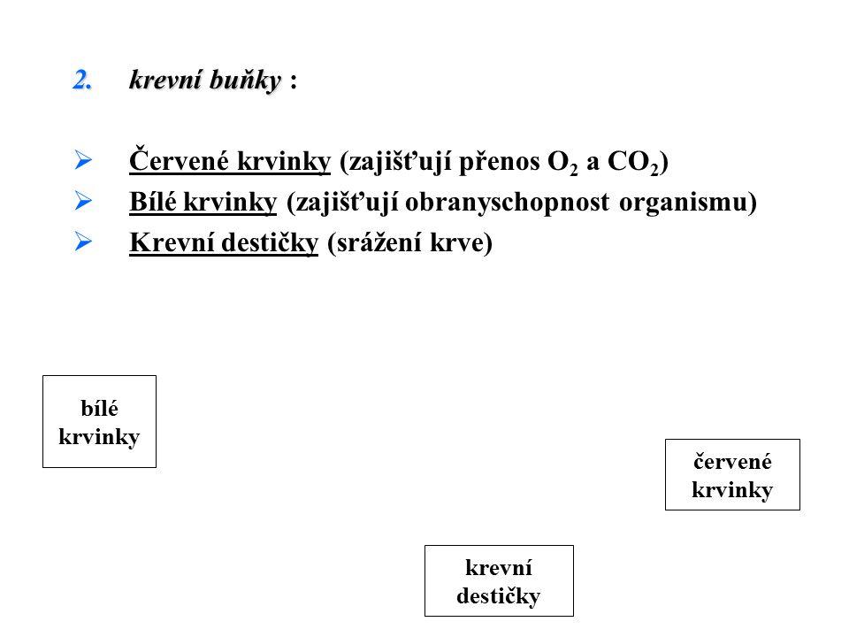 Červené krvinky (zajišťují přenos O2 a CO2)