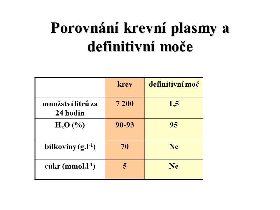 Porovnání krevní plasmy a definitivní moče