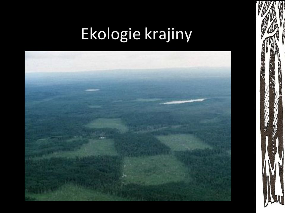Ekologie krajiny