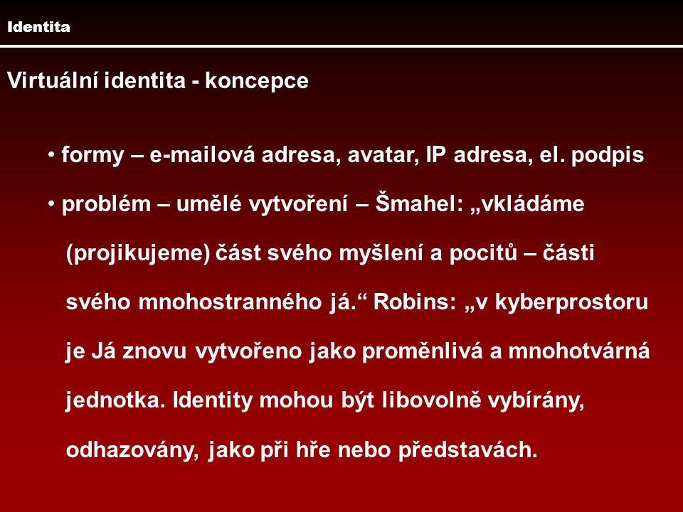 Virtuální identita - koncepce