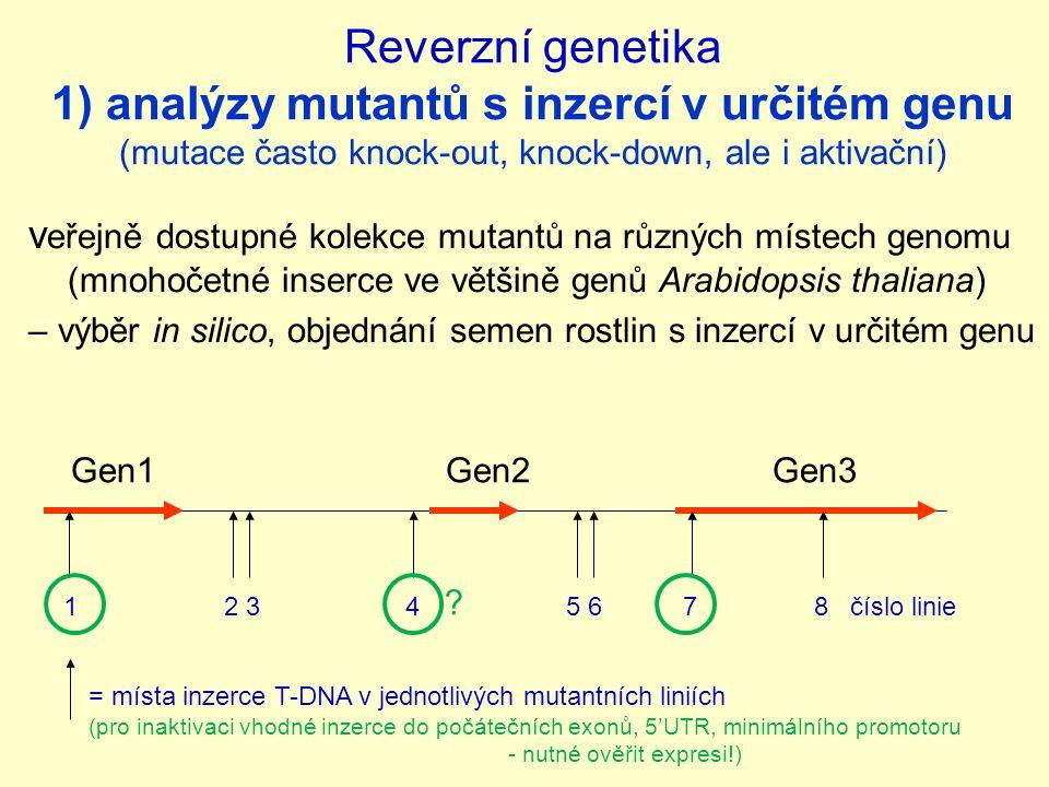 Reverzní genetika 1) analýzy mutantů s inzercí v určitém genu (mutace často knock-out, knock-down, ale i aktivační)